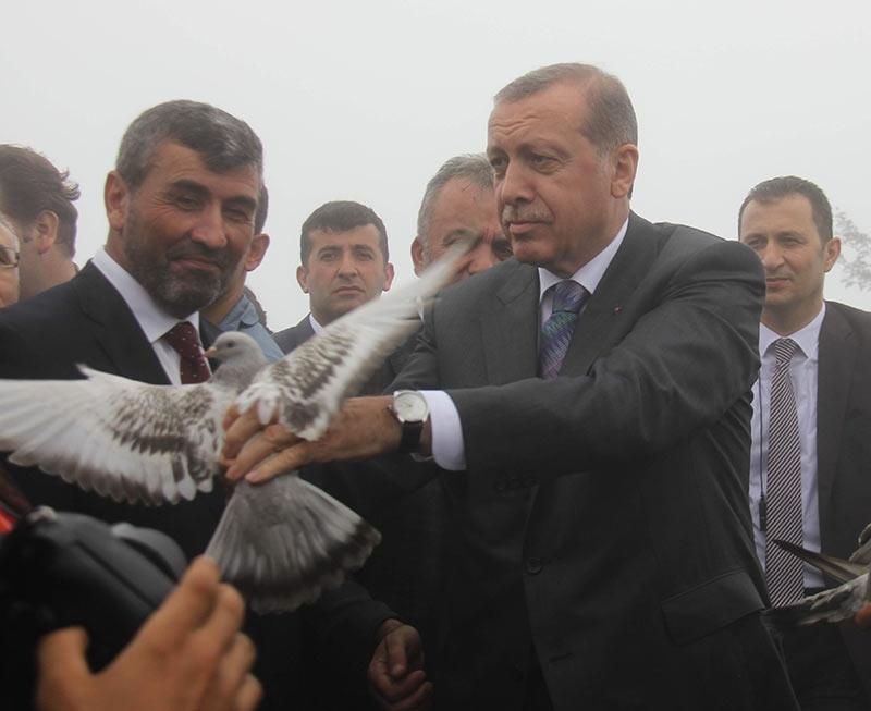 Rize'de Cumhurbaşkanı Erdoğan'ın başına keklik kondu 3