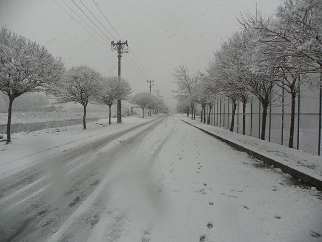 Pazar'dan kar manzaraları 10