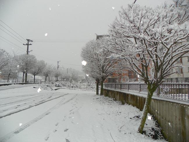 Pazar'dan kar manzaraları 13