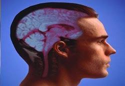 Beyin telepatisi gerçek!