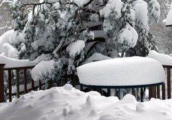 Artvin'de kar ve soğuk can aldı