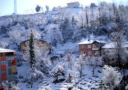 D. Karadeniz sahilinde kar sürprizi