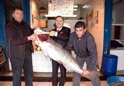 Trabzon'da bir milyarlık balık
