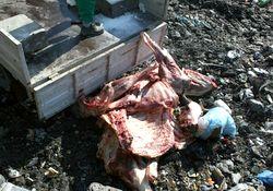 Rize'de hastalıklı etler imha edildi
