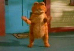 Garfield çiftetelli oynarsa!