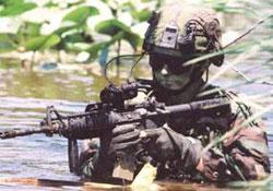 Bingöl'de Teror Örgütü Operasyonu