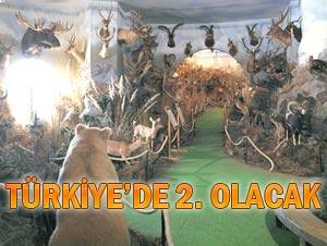 Çayeli'ne 'doğal yaşam müzesi' kuruluyor