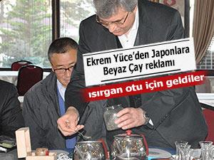 Ekrem Yüce'den Japon iş adamlarına beyaz çay
