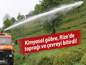 Kimyasal gübre, Rize'de toprağı ve çevreyi bitirdi!
