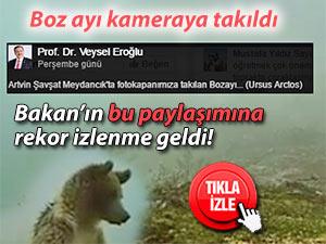 Bakan Eroğlu, hayran kaldığı boz ayı videosunu paylaştı