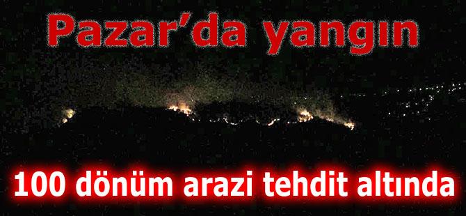 Pazar'da orman yangını: 100 dönüm alan tehdit altında!