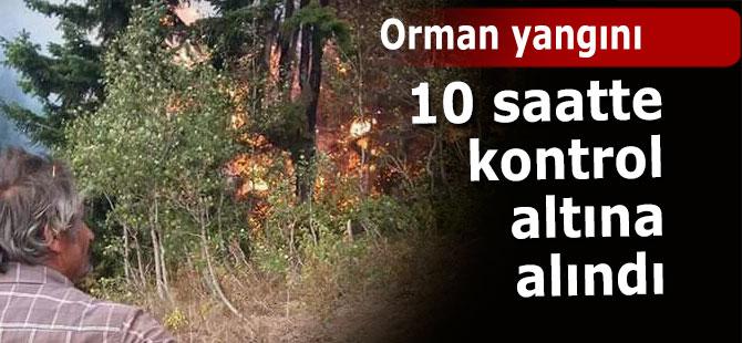 Yangın 10 saatte kontrol altına alındı