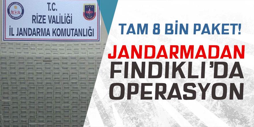 Jandarma'dan Fındıklı'da operasyon!