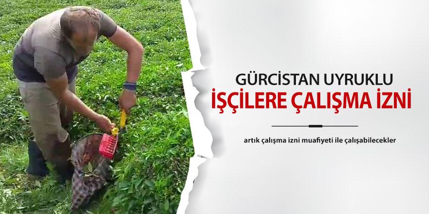 Gürcistan uyruklu vatandaşlar için çalışma izni