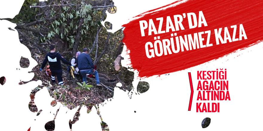 Pazar'da kestiği ağaç üzerine düşen vatandaşa 112 müdahale