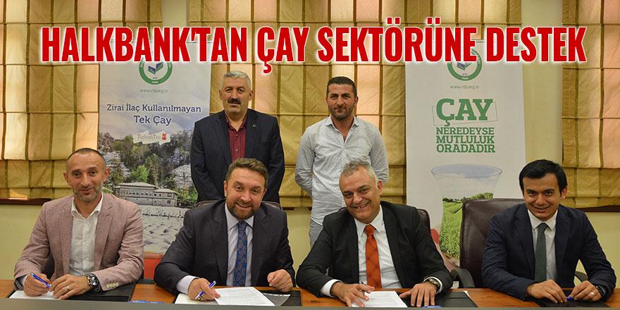 Halkbank'tan çay sektörüne destek