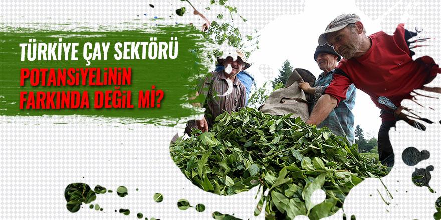 Türkiye çay sektörü, potansiyelinin farkında değil mi?
