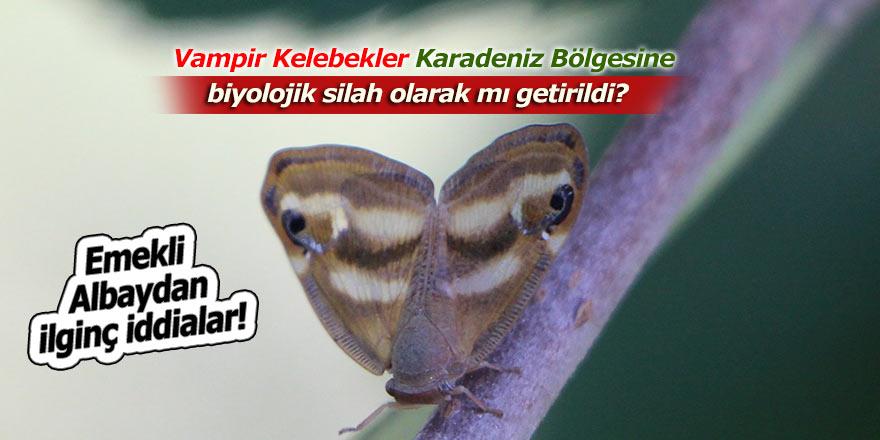 Vampir kelebeğinin biyolojik silah olabileceği iddiası