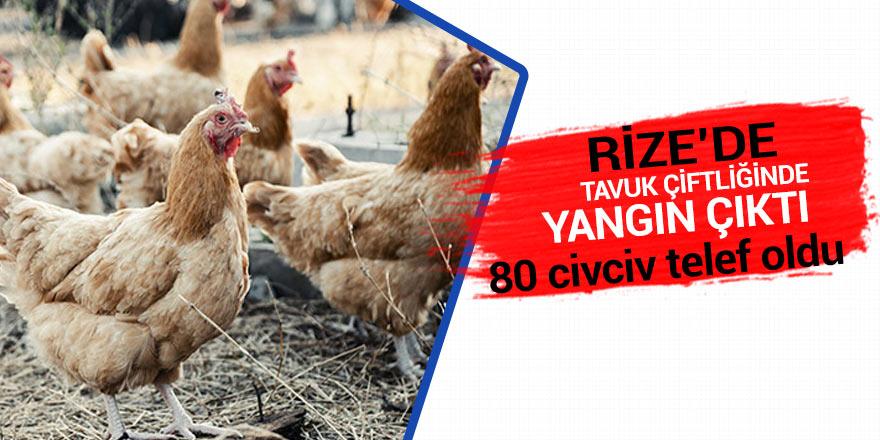 Rize'de tavuk çiftliğinde yangın
