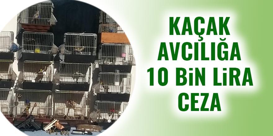 Kaçak avcılığa 10 bin lira ceza