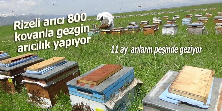 Rizeli arıcı 800 kovanla gezgin arıcılık yapıyor