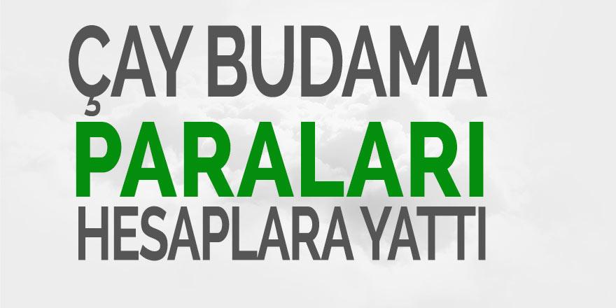 ÇAY BUDAMA BEDELLERİ HESAPLARA AKTARILDI