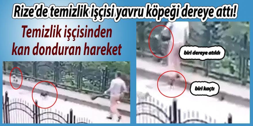 Rize'de temizlik işçisi yavru köpeği dereye attı!