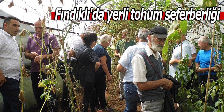Fındıklı'da yerli tohum seferberliği
