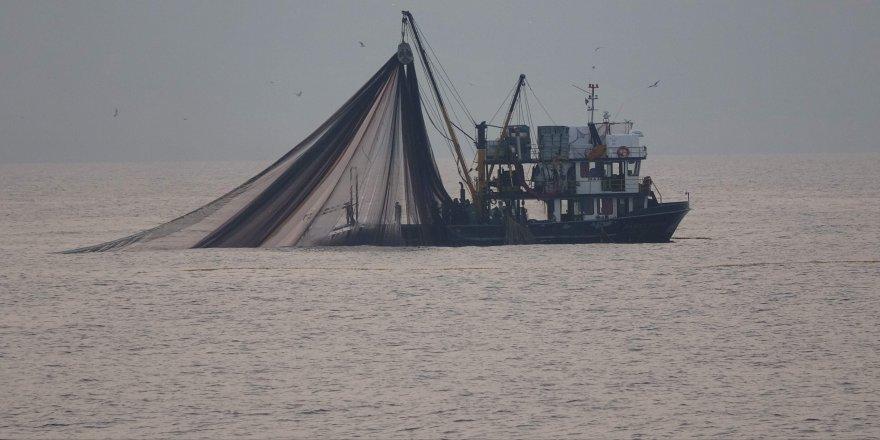 Balıkçıların hayal kırıklığı