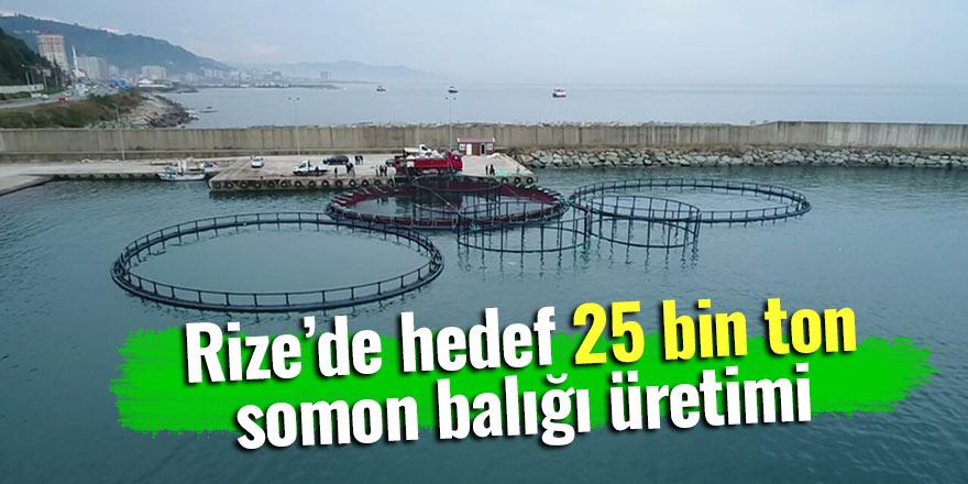 Rize'de hedef 25 bin ton somon balığı üretimi