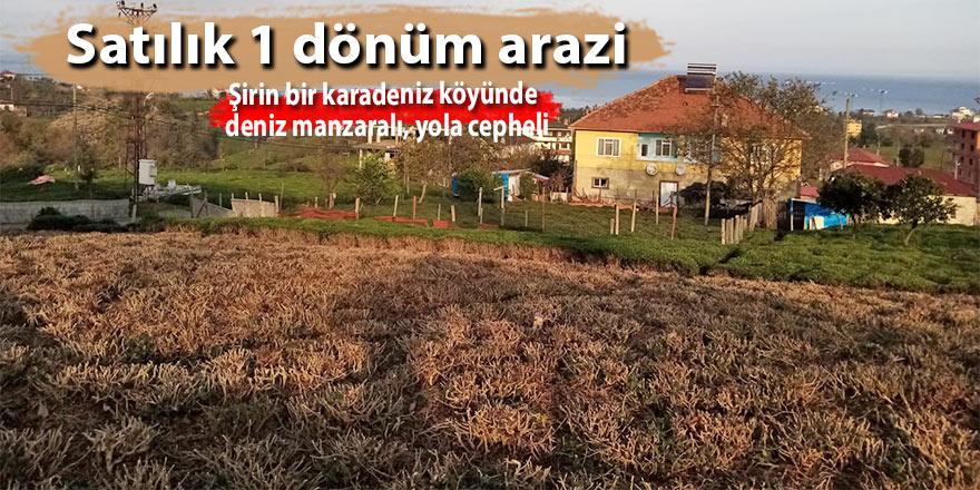 Satılık 1 dönüm arazi (reklam)