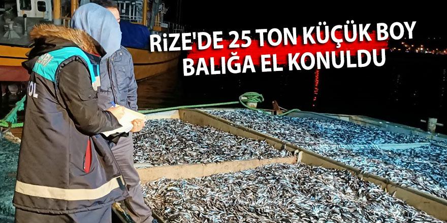 Rize'de 25 ton küçük boy balığa el konuldu