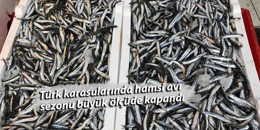 Türk karasularında hamsi avı sezonu büyük ölçüde kapandı
