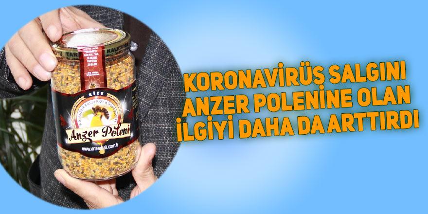 Koronavirüs salgını Anzer Poleni'ne ilgiyi arttırdı