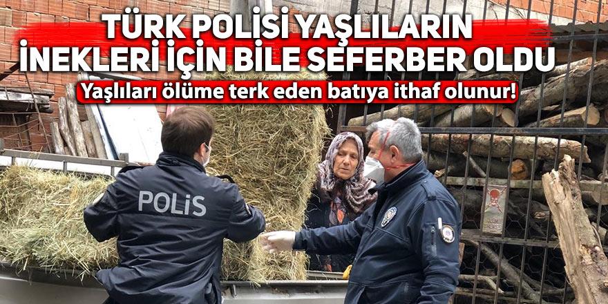 Türk polisi yaşlıların inekleri için bile seferber oldu