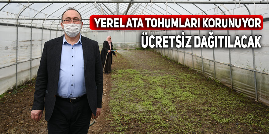 YEREL ATA TOHUMLARI KORUNUYOR