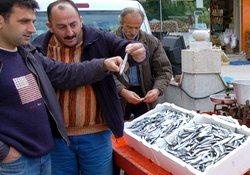 Karadeniz hamsisi pazarda