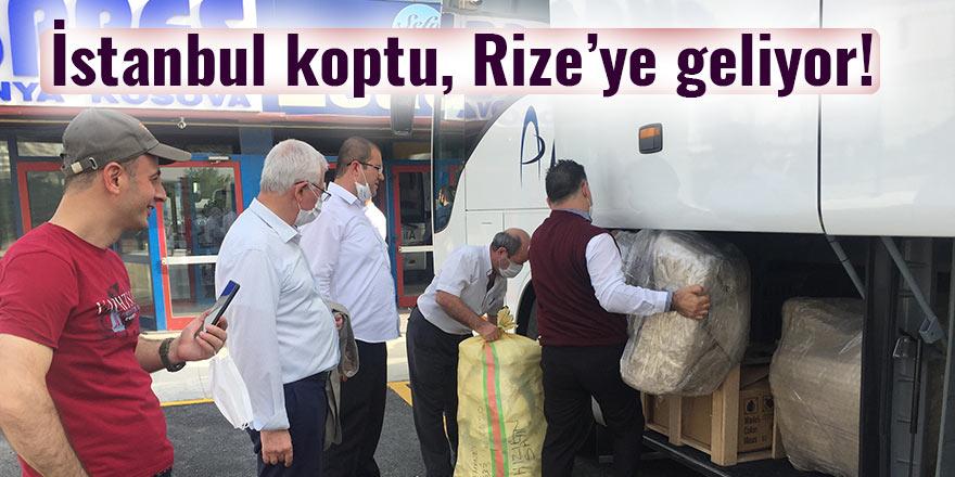 İstanbul'daki Karadenizliler çay üretimi için yollara düştü