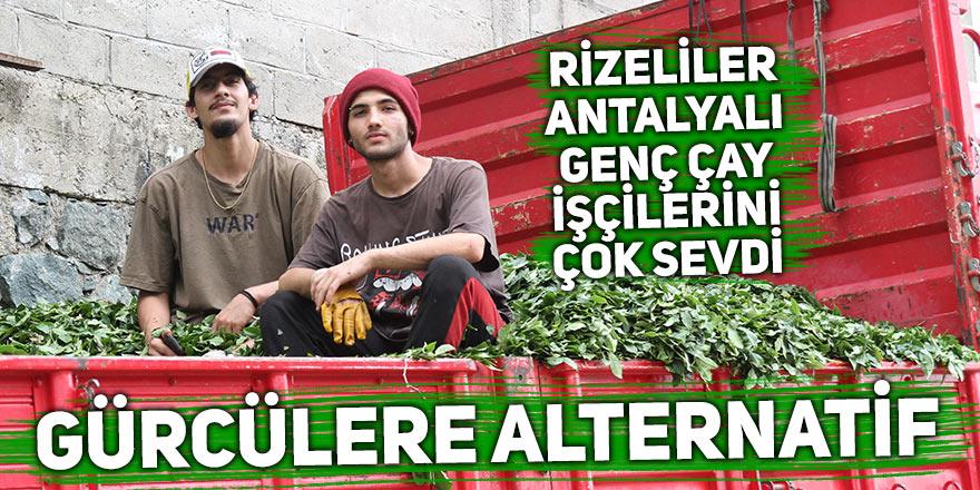 Rizeliler Antalyalı genç çay işçilerini çok sevdi