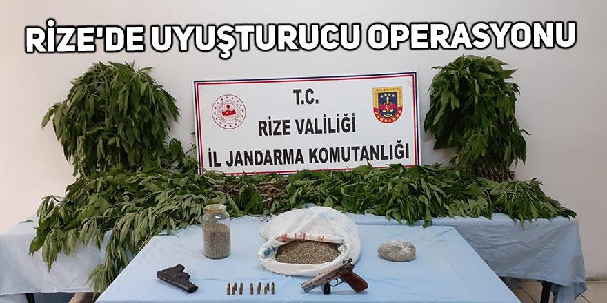 Rize'de uyuşturucu operasyonu