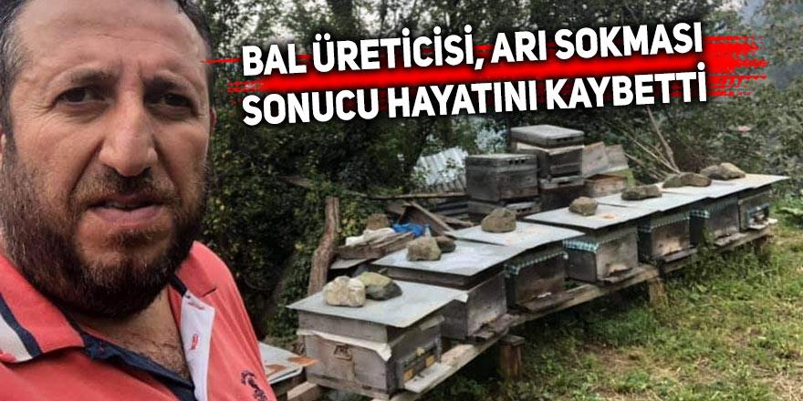 Bal üreticisi, arı sokması sonucu hayatını kaybetti