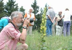 Artvin'e botanikçi çıkarması