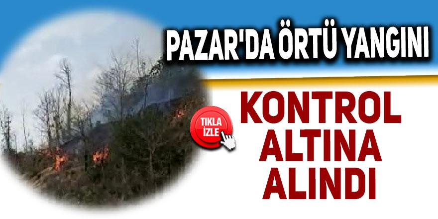 Pazar'da orman yangını kontrol altına alındı