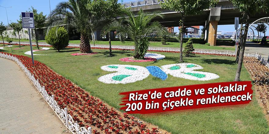 Rize'de cadde ve sokaklar 200 bin çiçekle renklenecek