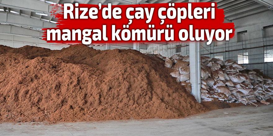 Çay çöpleri mangal kömürü oluyor