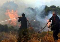 Yunanistan'daki yangında 41 ölü
