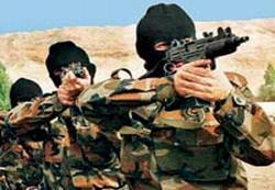 Özel TİM PKK'yı Perişan Etti