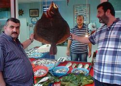 200 YTL'ye dev kalkan balığı