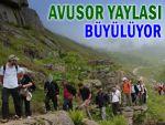 Avusor Yaylası doğa tutkunlarının gözdesi oldu