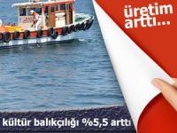 D. Karadeniz'de kültür balıkçılığı üretiminde yüzde 5,5 artış